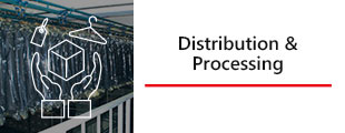 Distribution&Processing